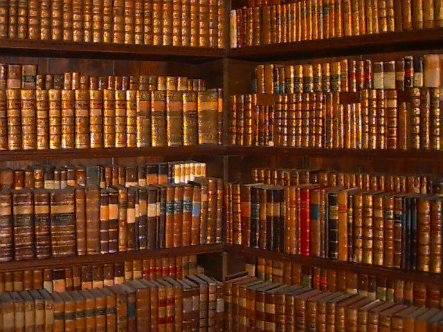 bibliothque.jpg