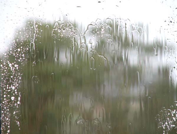 rainchuva1.jpg