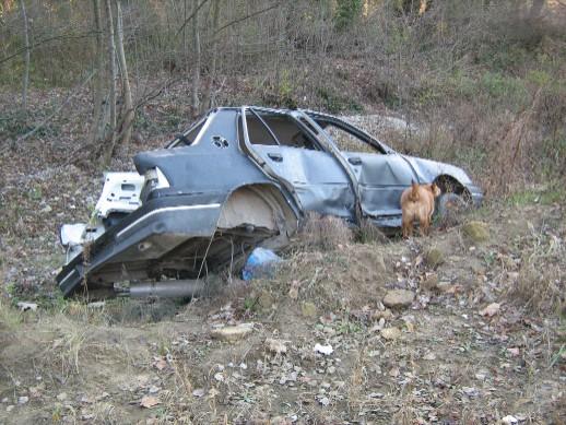 voiture30nov010.jpg